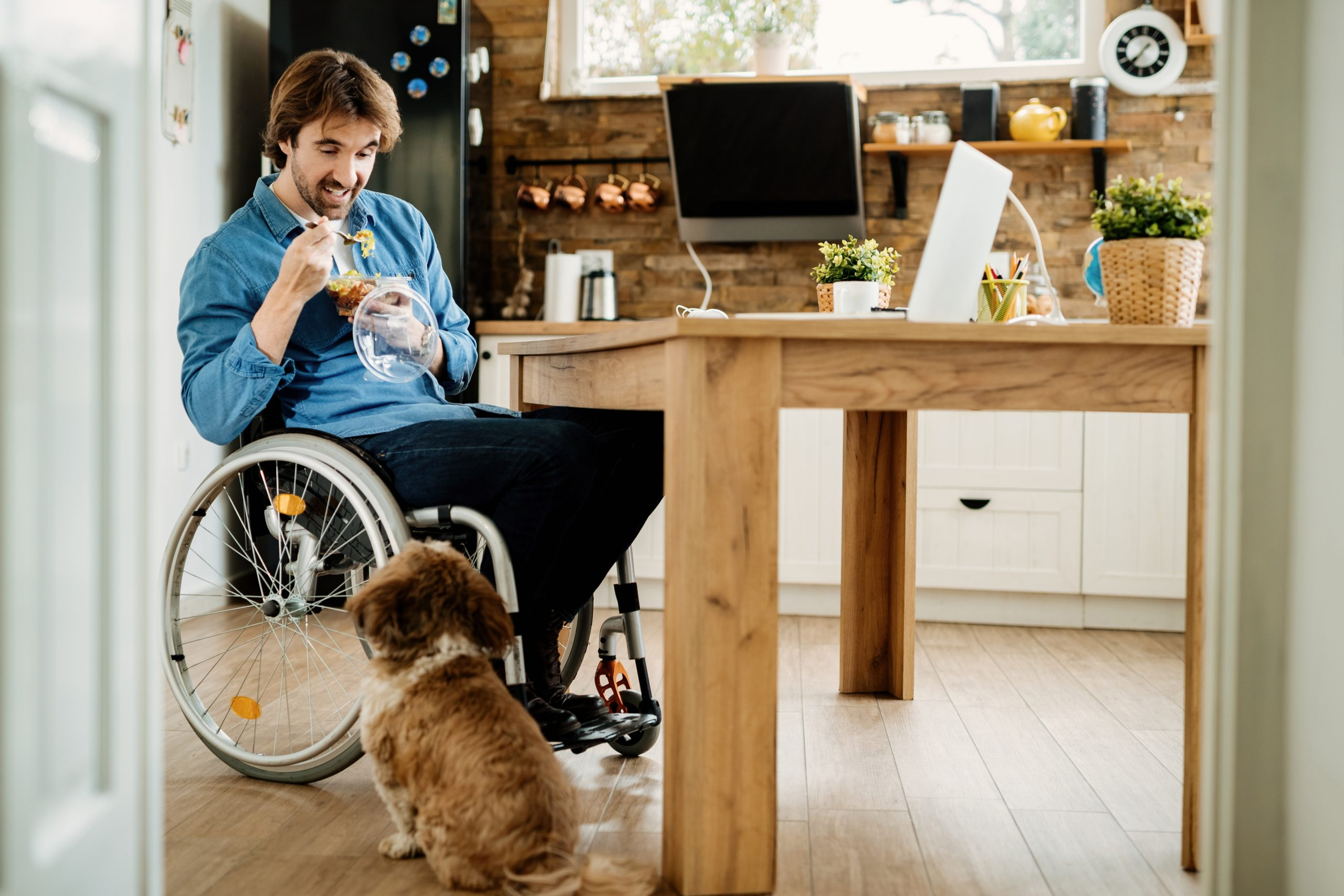 Dog looking up at man in a wheelchair eating